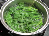 garlic-cabbage-seedlings03