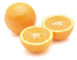 food-tt-fruit-20000107a01.jpg (16607 bytes)