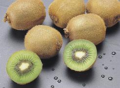 food-tt-fruit-20000110a01.jpg (22255 bytes)
