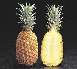 food-tt-fruit-20000113b01.jpg (28981 bytes)