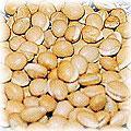 food-bean-lentil.jpg (9519 bytes)
